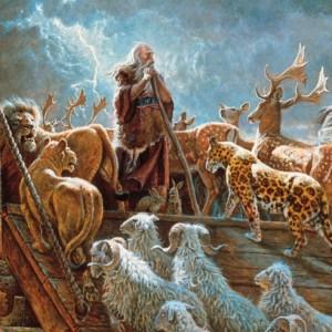 Lo que Sucedio en el tiempo de Noé tambien sucedera en el tiempo del Hijo del hombre